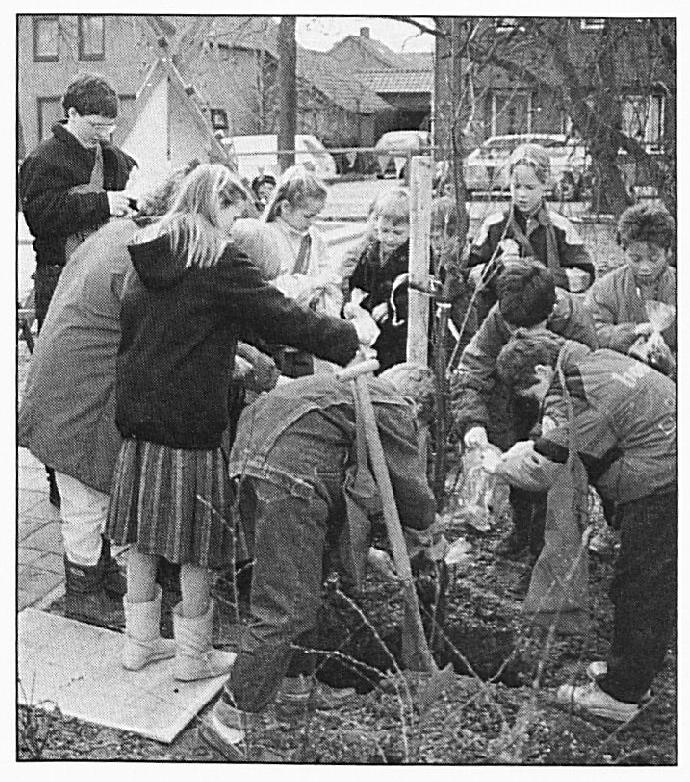 """De heropening van de school; de kinderen planten de """" Terebint'·. Dat is de Bijbelse naam voor een terpentijnboom."""
