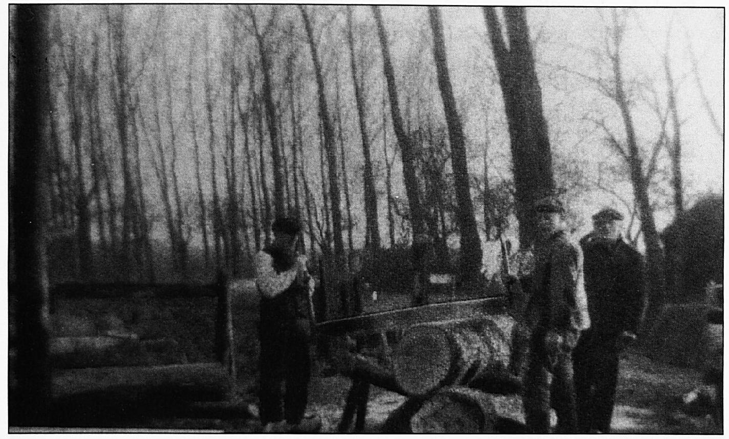Zo werd het klompenhout met de hand op blokken gezaagd, waarna men er klompen van kon maken. V.l.n.r.: Gradus van Gelder, zijn zoon Geri van Gelder en Van Rossum. Rechts is tussen de bomen door nog het oude koetshuis van de Lakenburg zichtbaar.