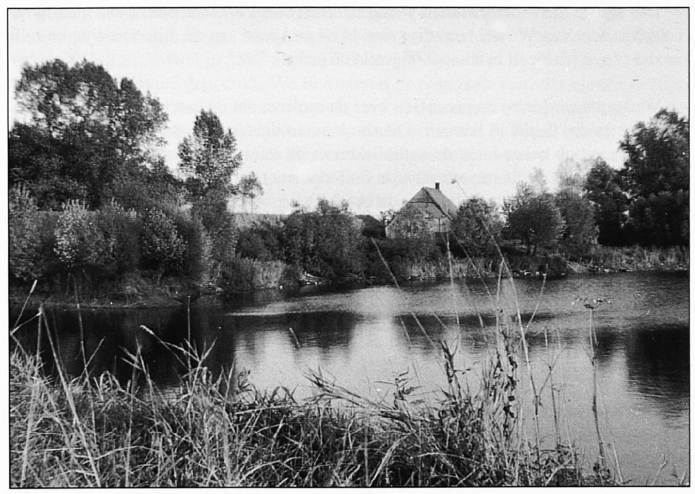 Dit huis stond op het perceel de Pollecamp, ook aan de Oude Wiel, de Pollebouwing gaat op deze foto schuil achter het geboomte links.