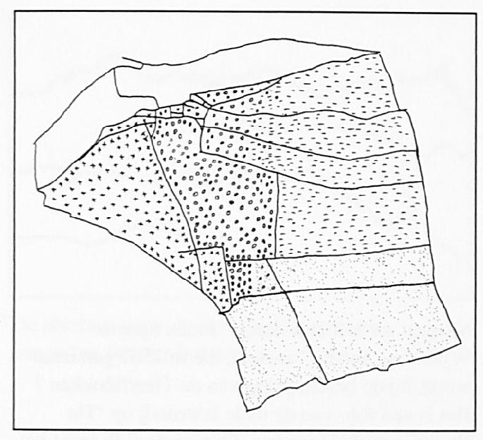 Een overzicht van de Tiendblokken. Gestreept het Biesheuvelblok, daarnaast met rondjes De Park. Beide blokken lopen gedeeltelijk in elkaar over waar de grens onduidelijk is. Het blok met de kruisjes is het Westerveld. Het gestippelde gedeelte Hoogbroeken en Liesbroek; ook hier is over een klein deel niet precies duidelijk waar de grens tussen het Park en dit blok precies liep. Tot slot niet gearceerd de uiterwaarden.